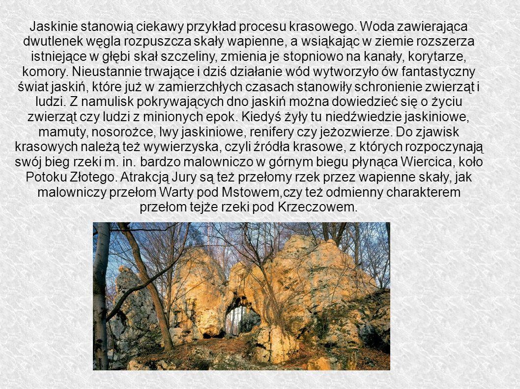 Jaskinie stanowią ciekawy przykład procesu krasowego. Woda zawierająca dwutlenek węgla rozpuszcza skały wapienne, a wsiąkając w ziemie rozszerza istni