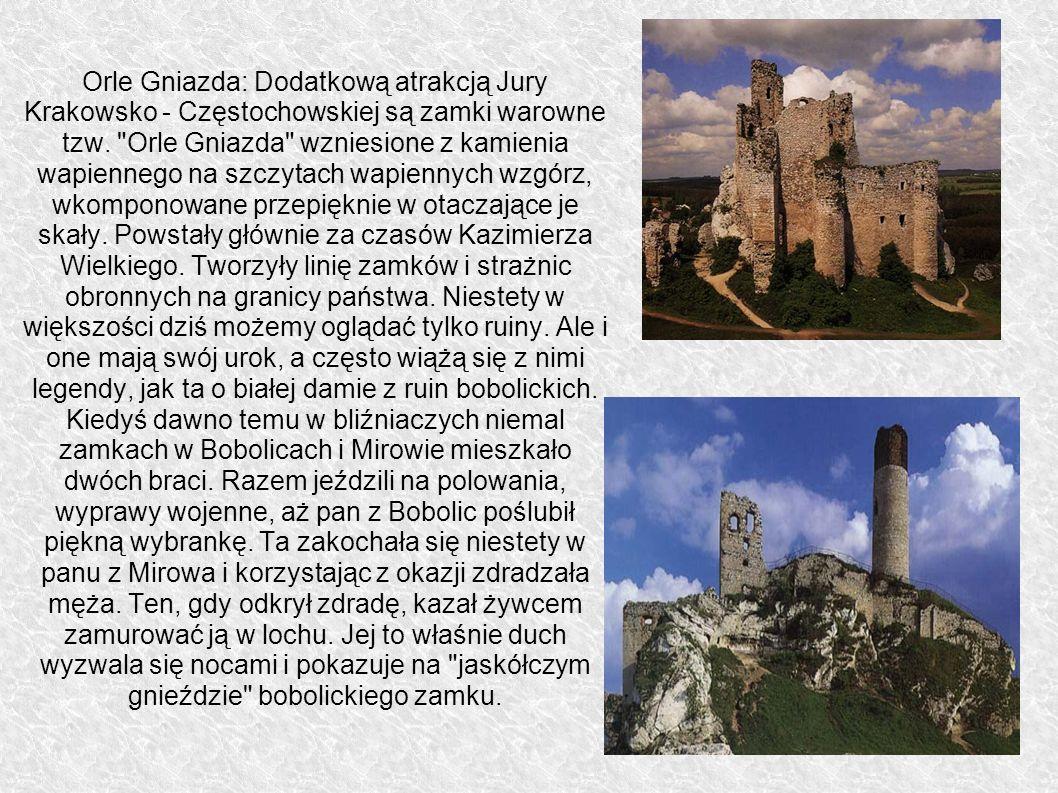 Orle Gniazda: Dodatkową atrakcją Jury Krakowsko - Częstochowskiej są zamki warowne tzw.