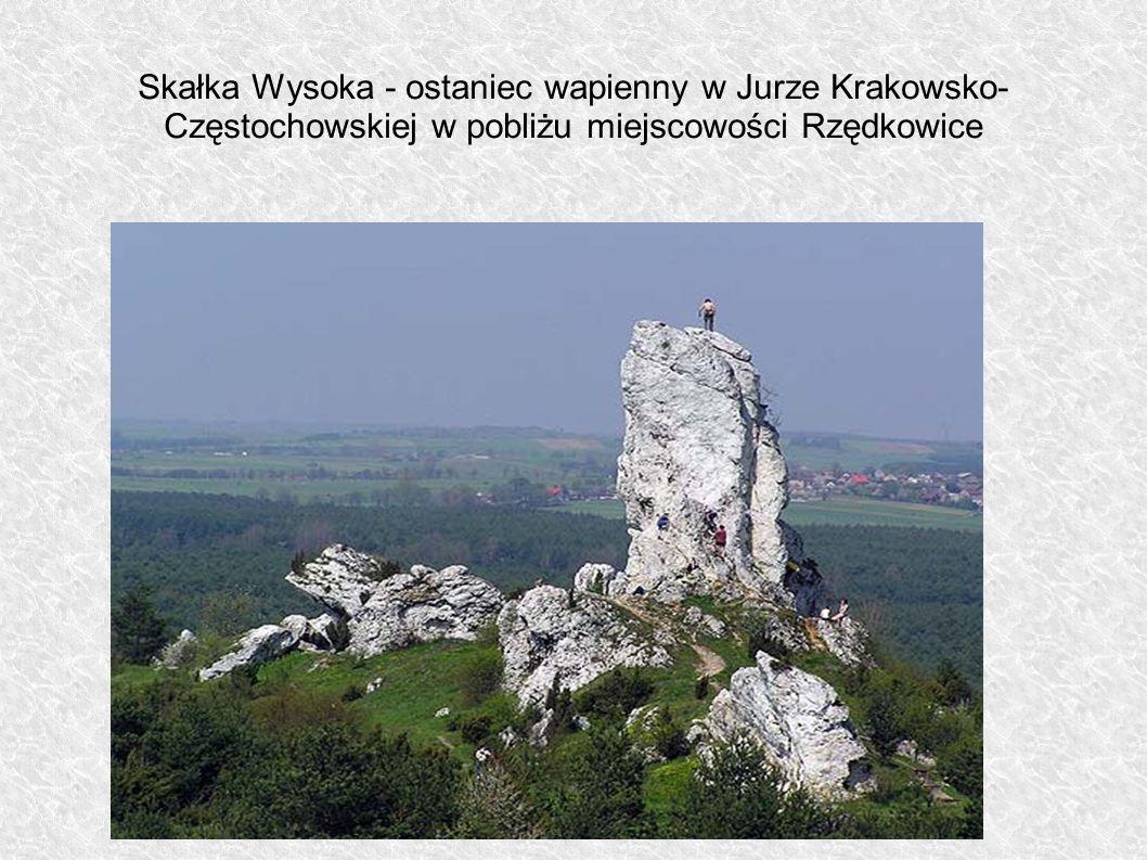 Skałka Wysoka - ostaniec wapienny w Jurze Krakowsko- Częstochowskiej w pobliżu miejscowości Rzędkowice