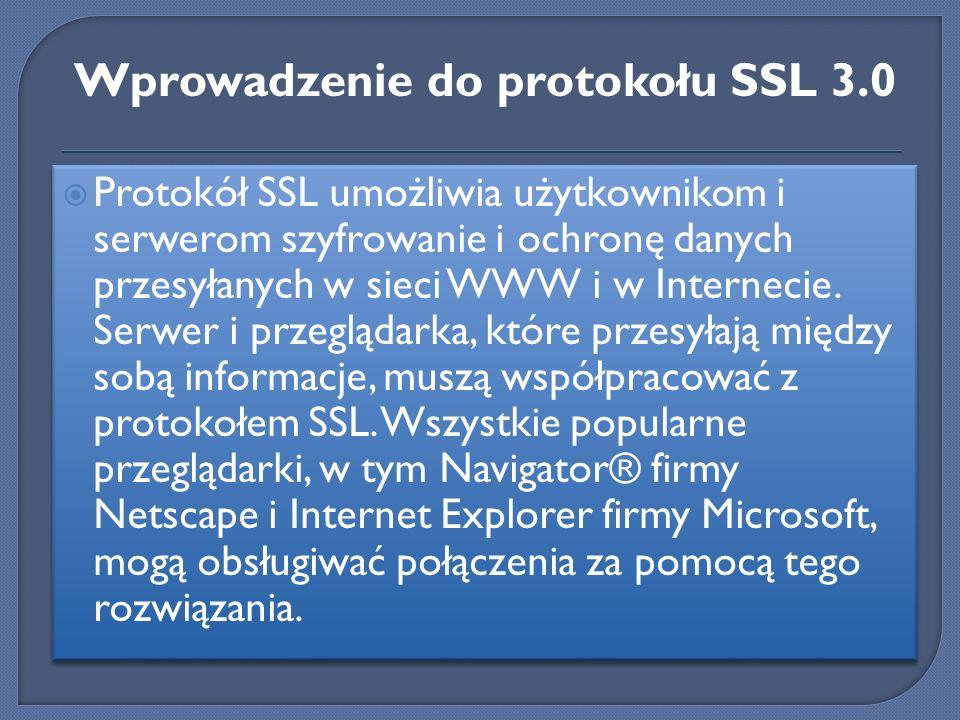 Zabezpieczenie wymienianych danych nie rozwiązuje wszystkich problemów użytkowników Internetu.