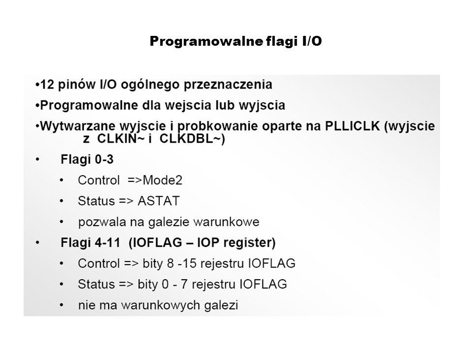 Programowalne flagi I/O