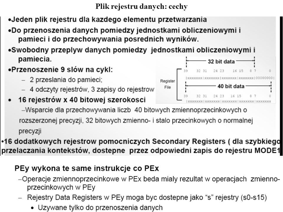 Plik rejestru danych: cechy
