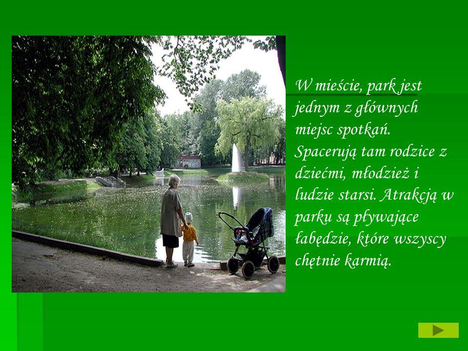 W mieście, park jest jednym z głównych miejsc spotkań. Spacerują tam rodzice z dziećmi, młodzież i ludzie starsi. Atrakcją w parku są pływające łabędz