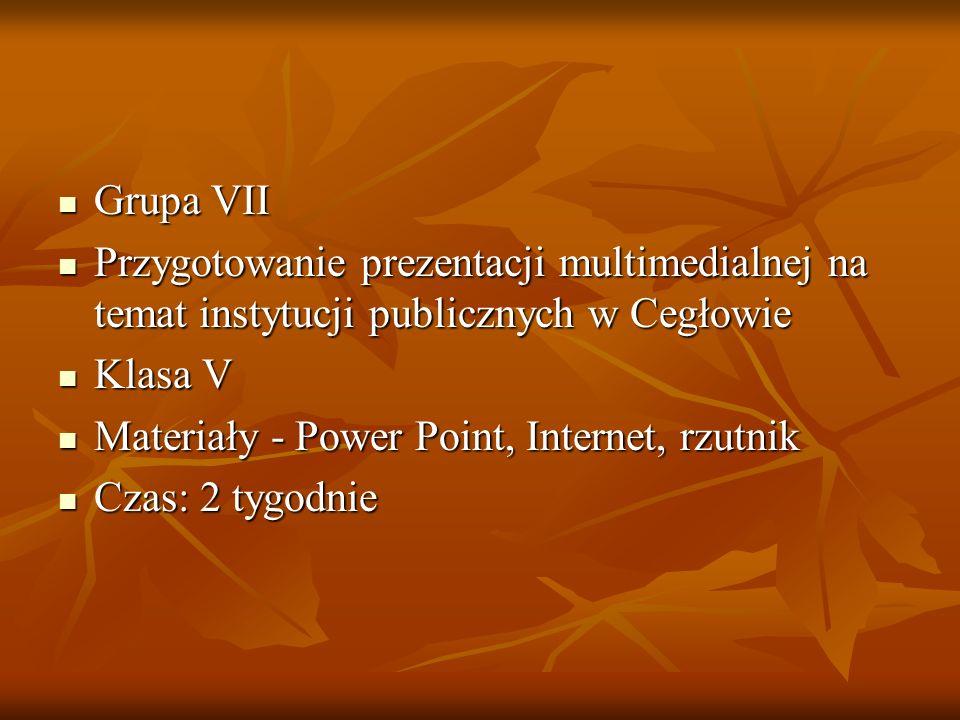 Grupa VII Grupa VII Przygotowanie prezentacji multimedialnej na temat instytucji publicznych w Cegłowie Przygotowanie prezentacji multimedialnej na te
