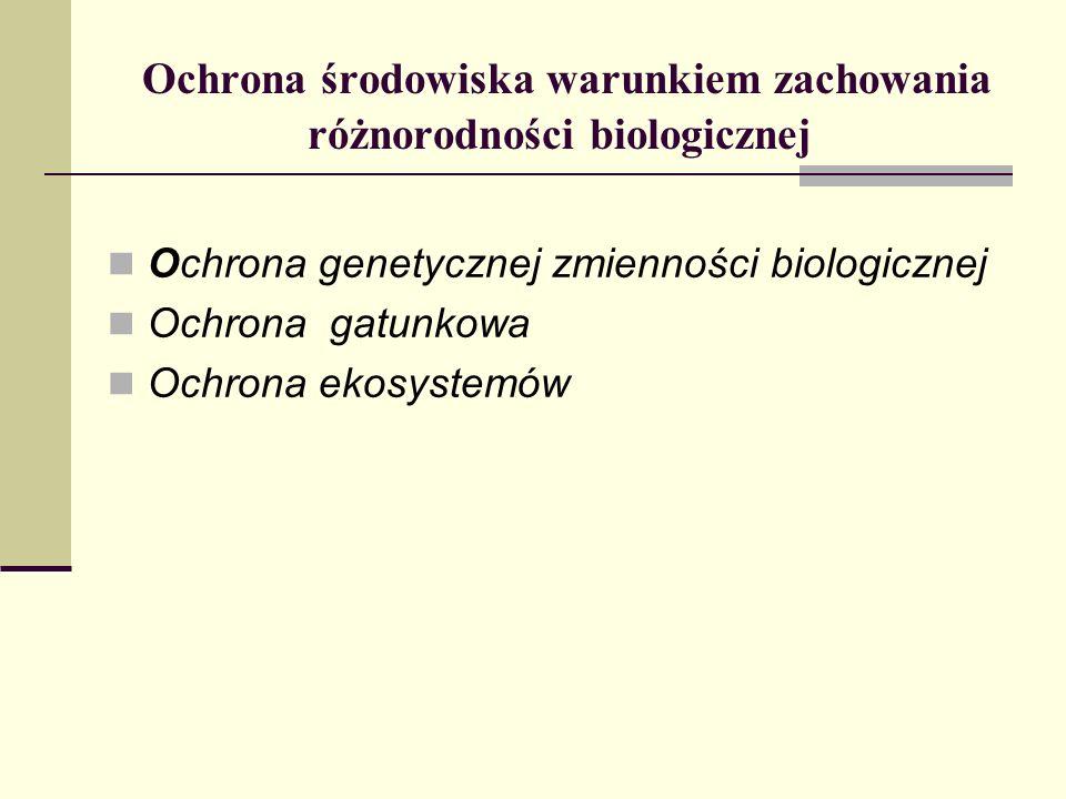 Ochrona środowiska warunkiem zachowania różnorodności biologicznej Ochrona genetycznej zmienności biologicznej Ochrona gatunkowa Ochrona ekosystemów
