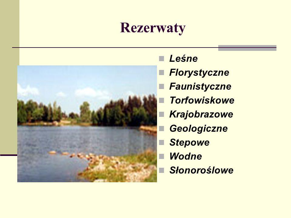 Rezerwaty Leśne Florystyczne Faunistyczne Torfowiskowe Krajobrazowe Geologiczne Stepowe Wodne Słonoroślowe