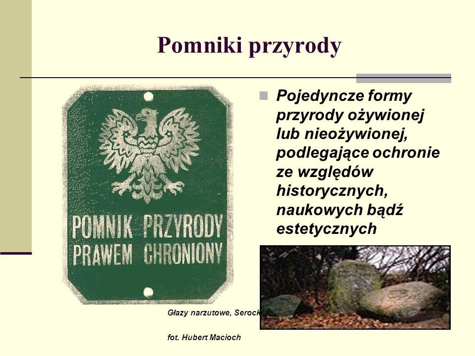 Parki krajobrazowe W Polsce obecnie jest ok.120 parków krajobrazowych.