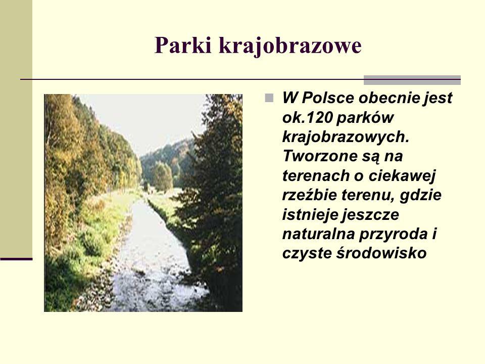 Parki krajobrazowe W Polsce obecnie jest ok.120 parków krajobrazowych. Tworzone są na terenach o ciekawej rzeźbie terenu, gdzie istnieje jeszcze natur