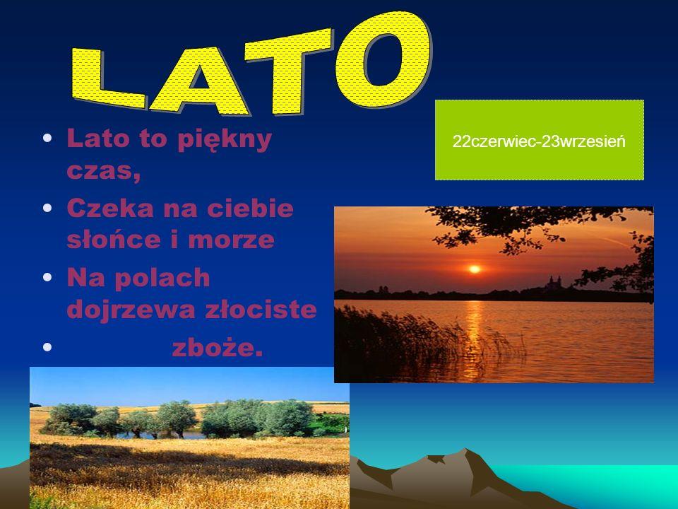 Lato to piękny czas, Czeka na ciebie słońce i morze Na polach dojrzewa złociste zboże.