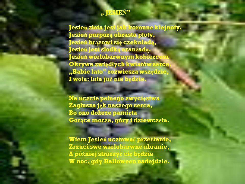 JESIE Ń Jesie ń z ł ota jest jak koronne klejnoty, Jesie ń purpur ą obrasta p ł oty, Jesie ń br ą zowi si ę czekolad ą, Jesie ń jest s ł odk ą oran ż ad ą.