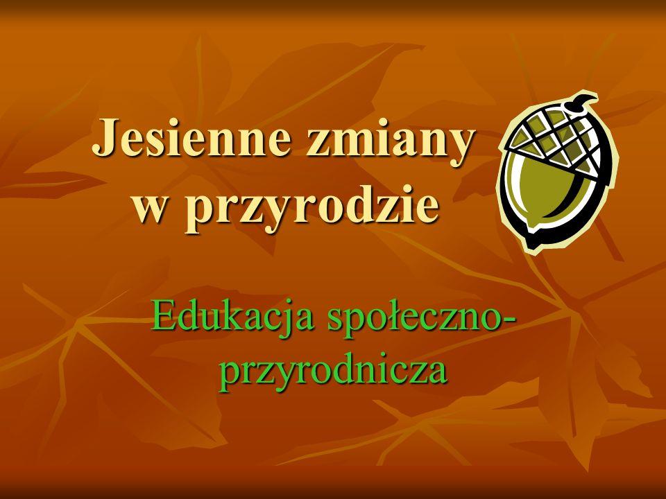 Jesienny kujawiaczek 1.Jesienny kujawiaczek na skakance z wiatru skacze, 1.