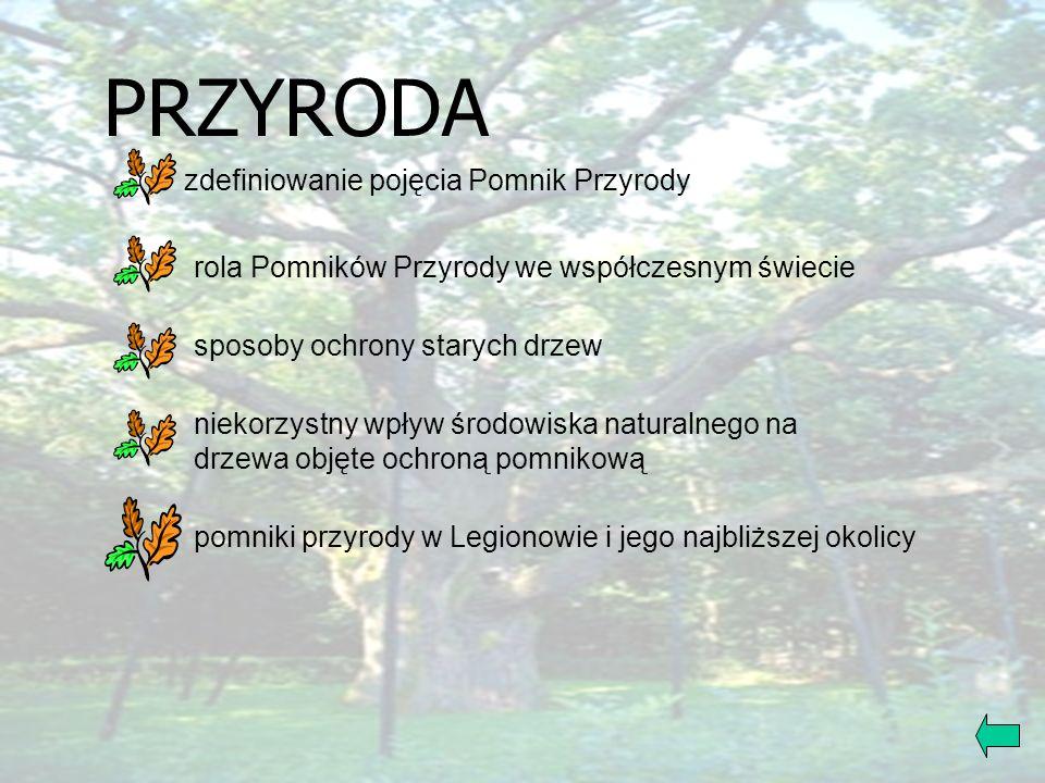PRZYRODAJĘZYK POLSKI GODZINA WYCHOWAWCZA DRZEWO... PLASTYKA MATEMATYKA INFORMATYKA
