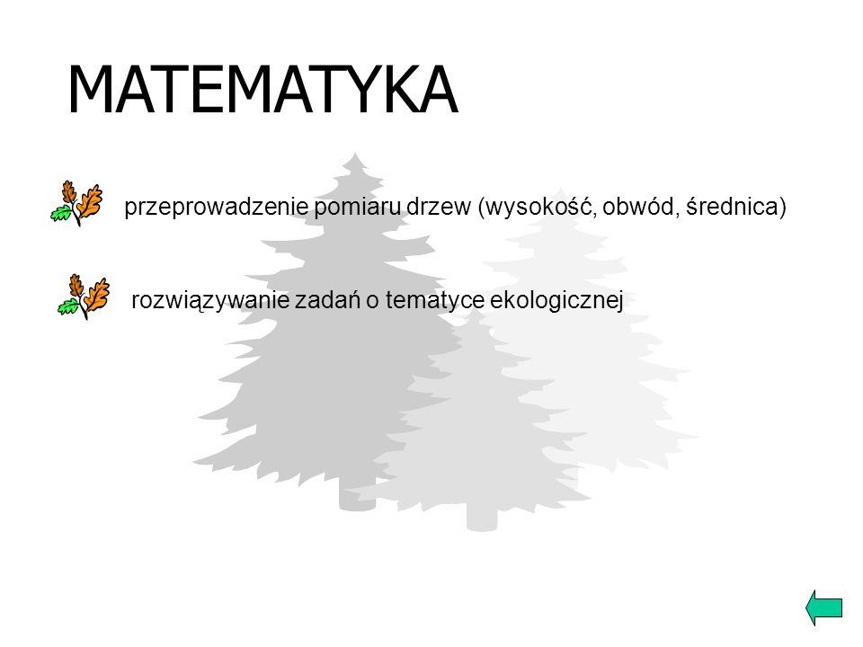 PLASTYKA konkurs plastyczny Drzewo – Pomnik Przyrody