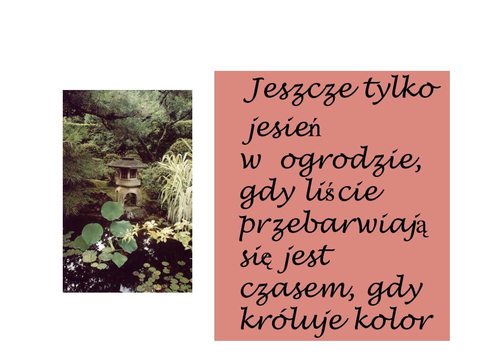 Jeszcze tylko jesie ń w ogrodzie, gdy li ś cie przebarwiaj ą si ę jest czasem, gdy króluje kolor