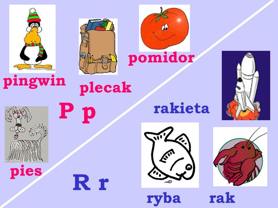 pies pingwin plecak pomidor P p rakieta rybarak R r