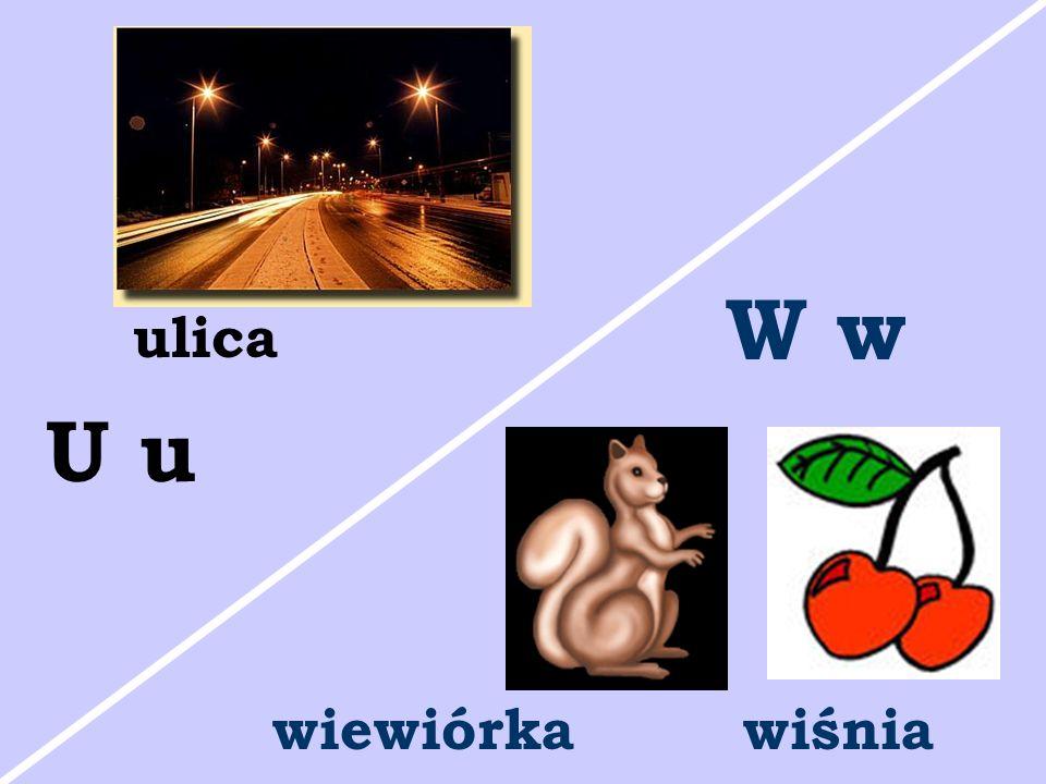 ulica U u wiewiórkawiśnia W w
