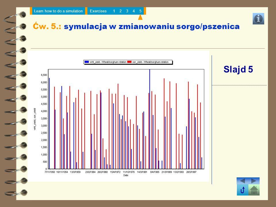 U Learn how to do a simulationExercises12345 Slajd 5 Ćw. 5.: symulacja w zmianowaniu sorgo/pszenica