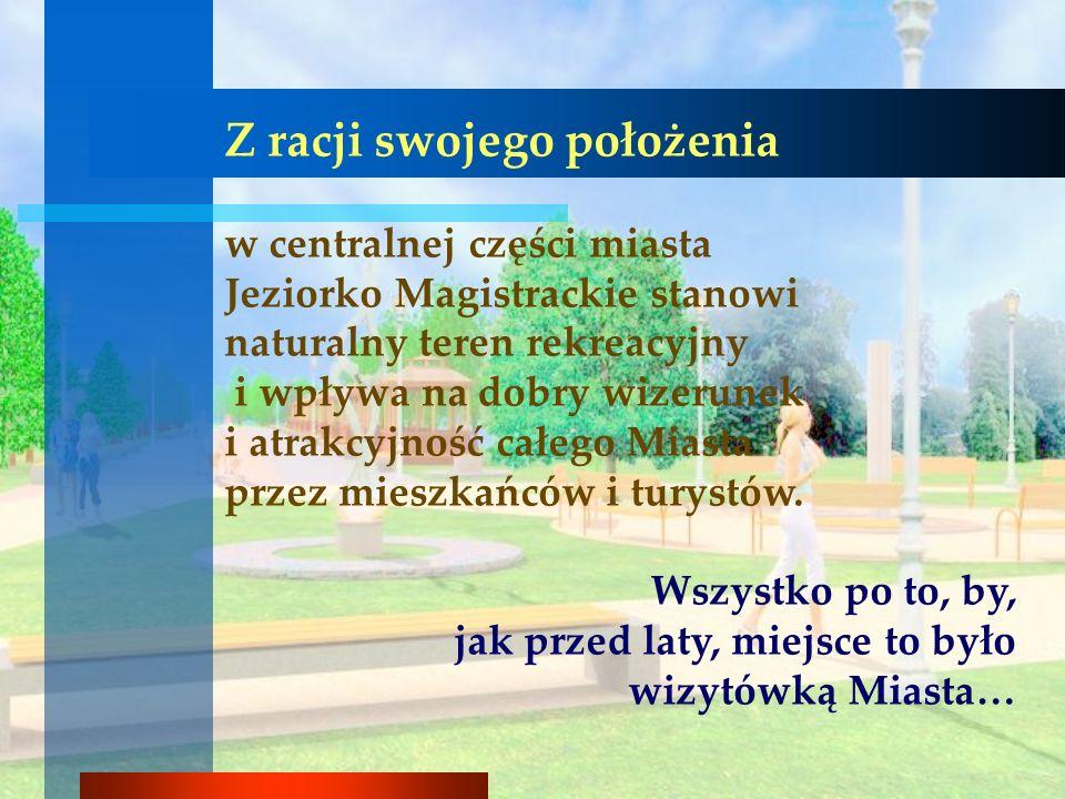 Widok od ulicy Warszawskiej 12 wodotrysków skierowanych w głąb Jeziora Magistrackiego.