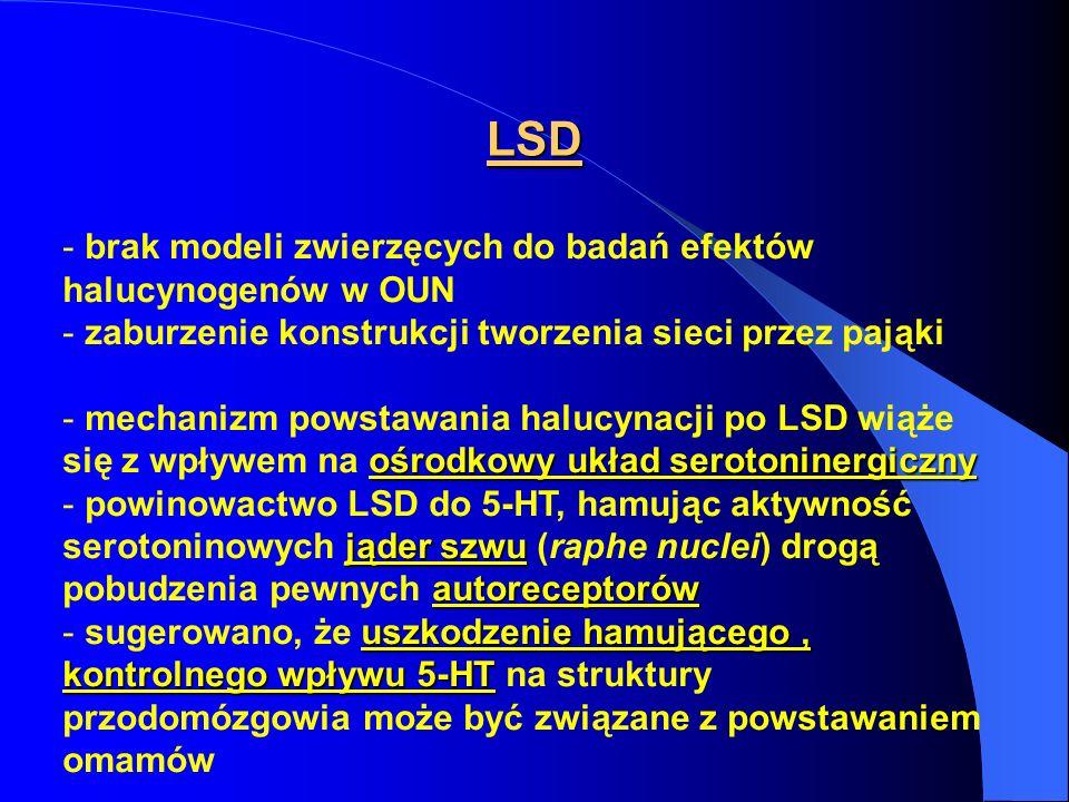 LSD - brak modeli zwierzęcych do badań efektów halucynogenów w OUN - zaburzenie konstrukcji tworzenia sieci przez pająki ośrodkowy układ serotoninergi