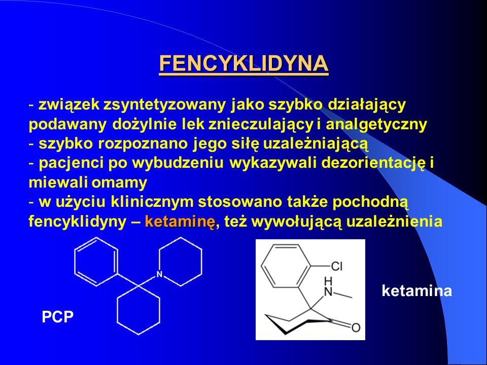 FENCYKLIDYNA - związek zsyntetyzowany jako szybko działający podawany dożylnie lek znieczulający i analgetyczny - szybko rozpoznano jego siłę uzależni