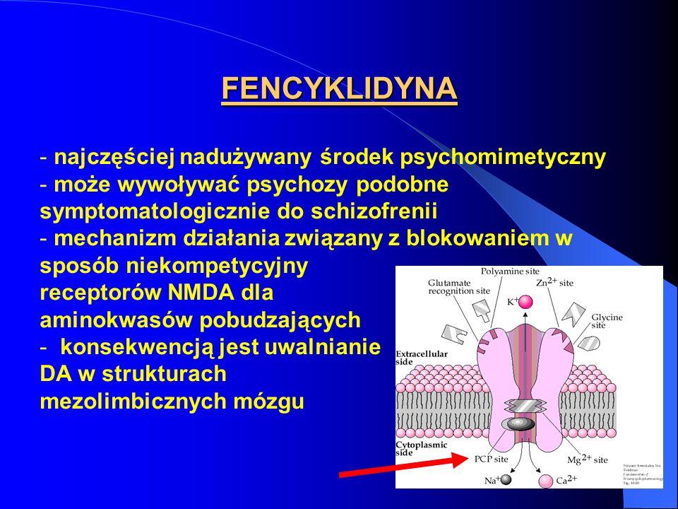 FENCYKLIDYNA - najczęściej nadużywany środek psychomimetyczny - może wywoływać psychozy podobne symptomatologicznie do schizofrenii - mechanizm działa
