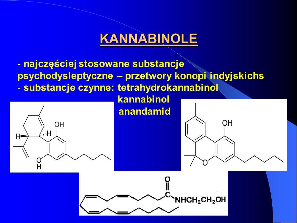 KANNABINOLE - najczęściej stosowane substancje psychodysleptyczne – przetwory konopi indyjskichs - substancje czynne: tetrahydrokannabinol kannabinol