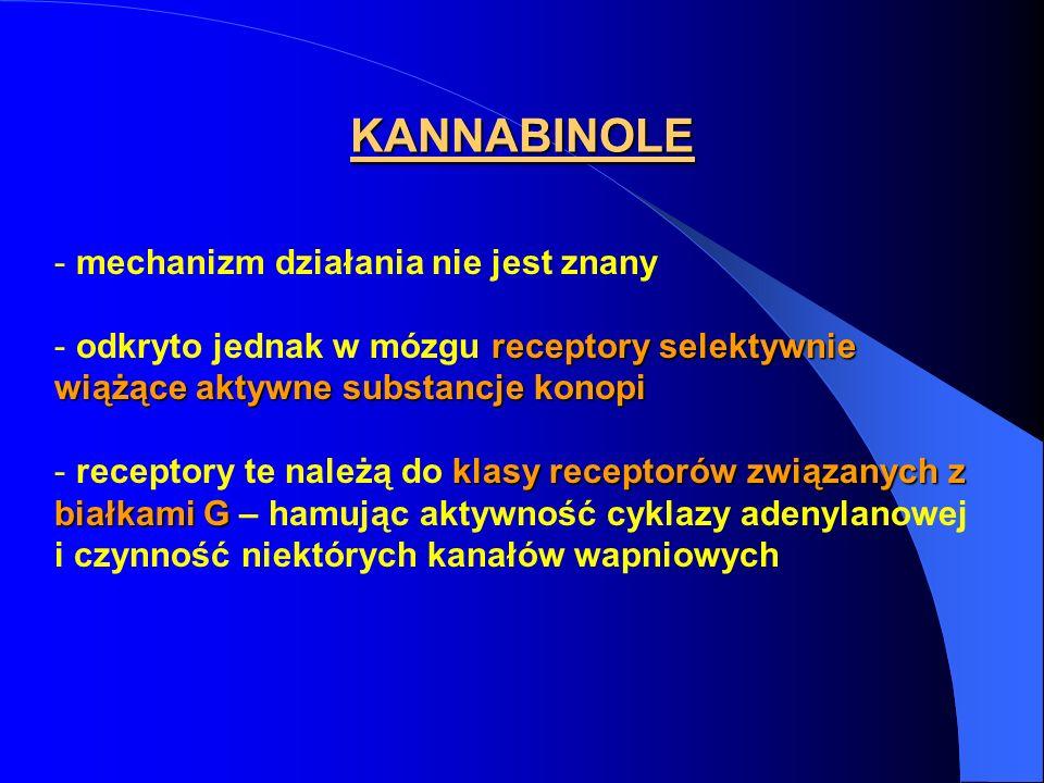 KANNABINOLE - mechanizm działania nie jest znany receptory selektywnie wiążące aktywne substancje konopi - odkryto jednak w mózgu receptory selektywni