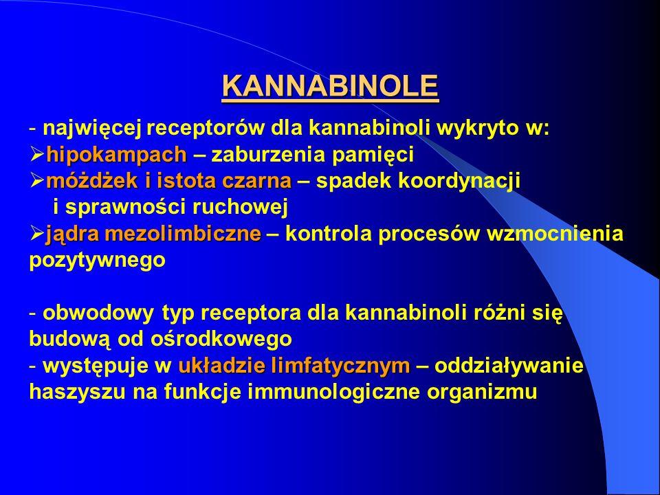 KANNABINOLE - najwięcej receptorów dla kannabinoli wykryto w: hipokampach hipokampach – zaburzenia pamięci móżdżek i istota czarna móżdżek i istota cz
