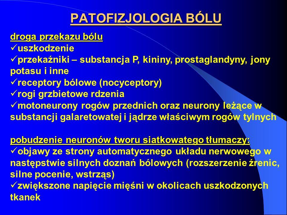 PATOFIZJOLOGIA BÓLU droga przekazu bólu uszkodzenie przekaźniki – substancja P, kininy, prostaglandyny, jony potasu i inne receptory bólowe (nocycepto