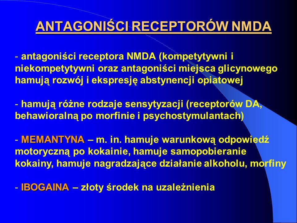 ANTAGONIŚCI RECEPTORÓW NMDA - antagoniści receptora NMDA (kompetytywni i niekompetytywni oraz antagoniści miejsca glicynowego hamują rozwój i ekspresj