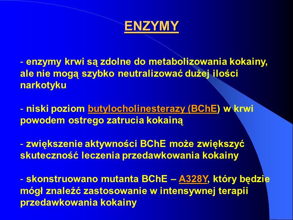ENZYMY - enzymy krwi są zdolne do metabolizowania kokainy, ale nie mogą szybko neutralizować dużej ilości narkotyku butylocholinesterazy (BChE - niski