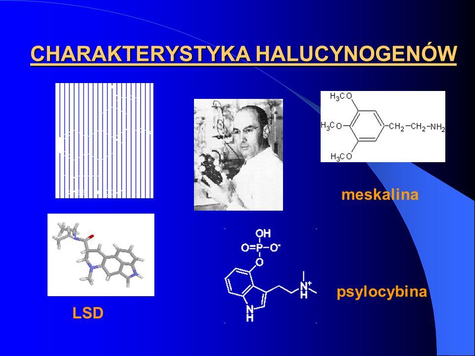 CHARAKTERYSTYKA HALUCYNOGENÓW meskalina LSD psylocybina