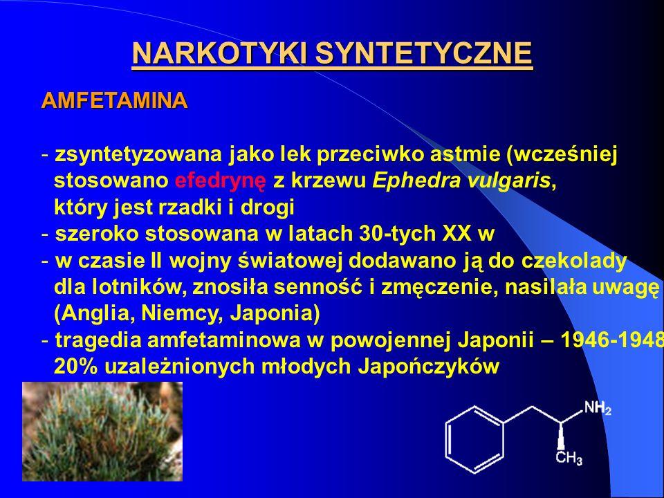 NARKOTYKI SYNTETYCZNE AMFETAMINA - zsyntetyzowana jako lek przeciwko astmie (wcześniej stosowano efedrynę z krzewu Ephedra vulgaris, który jest rzadki