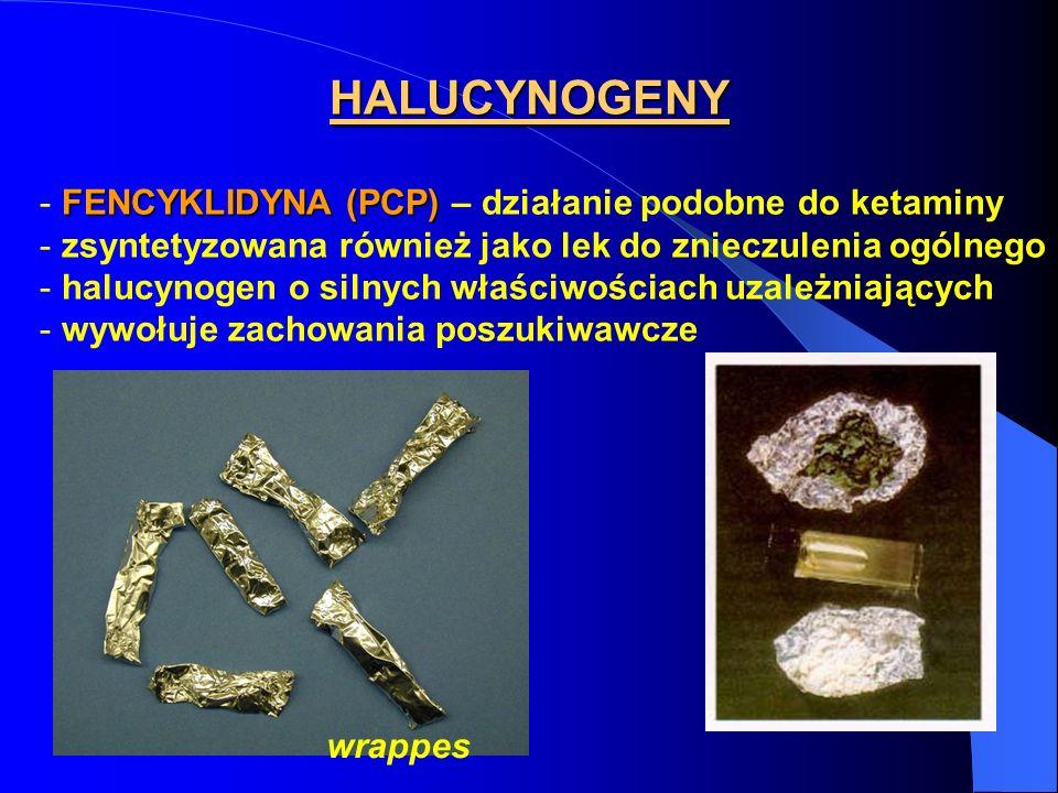HALUCYNOGENY FENCYKLIDYNA (PCP) - FENCYKLIDYNA (PCP) – działanie podobne do ketaminy - zsyntetyzowana również jako lek do znieczulenia ogólnego - halu