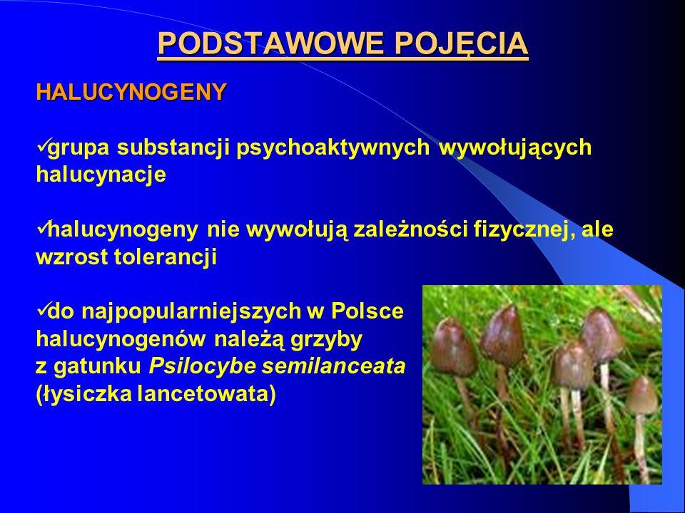 PODSTAWOWE POJĘCIA HALUCYNOGENY grupa substancji psychoaktywnych wywołujących halucynacje halucynogeny nie wywołują zależności fizycznej, ale wzrost t