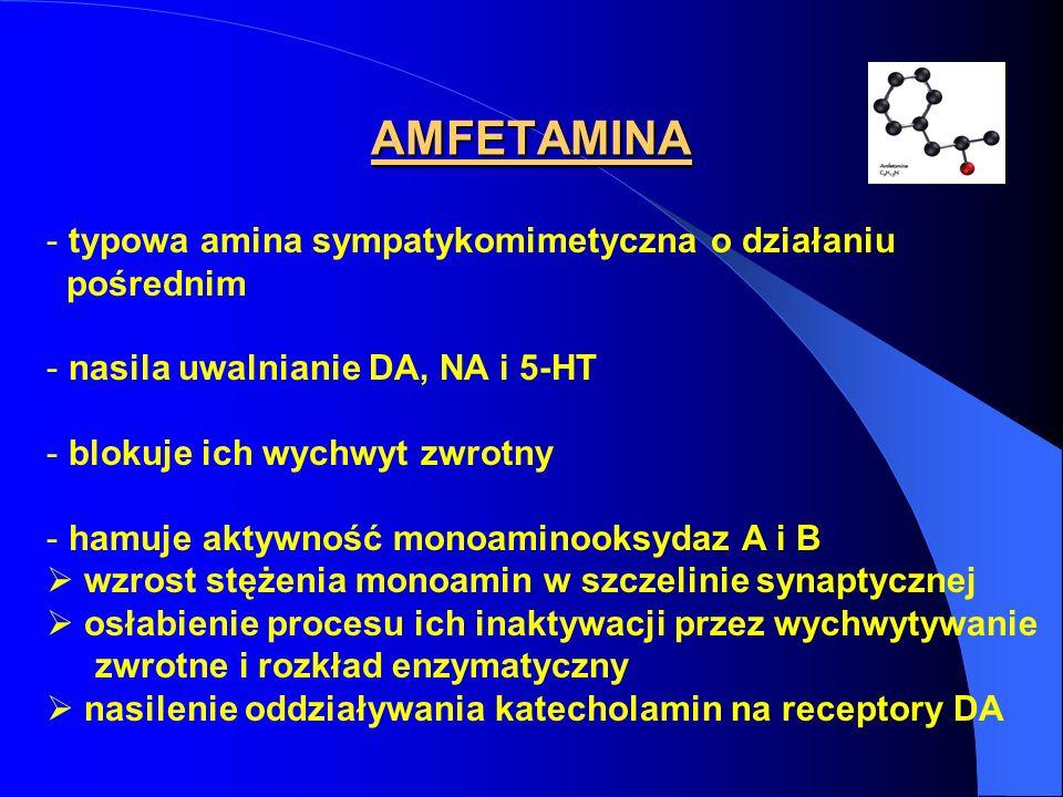 AMFETAMINA - typowa amina sympatykomimetyczna o działaniu pośrednim - nasila uwalnianie DA, NA i 5-HT - blokuje ich wychwyt zwrotny - hamuje aktywność