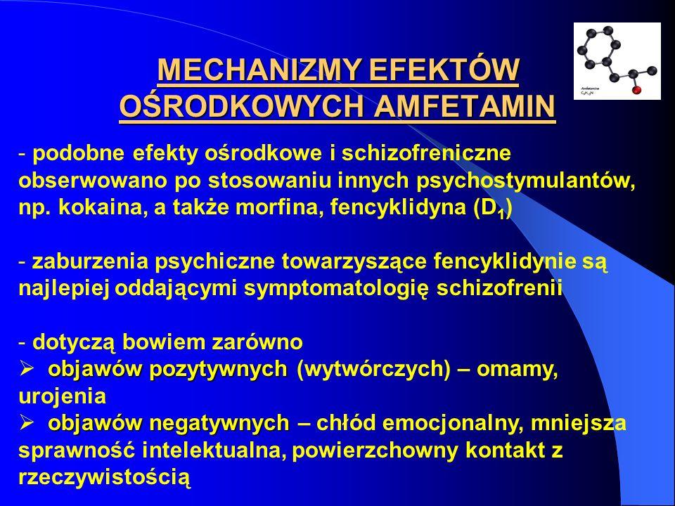 MECHANIZMY EFEKTÓW OŚRODKOWYCH AMFETAMIN - podobne efekty ośrodkowe i schizofreniczne obserwowano po stosowaniu innych psychostymulantów, np. kokaina,