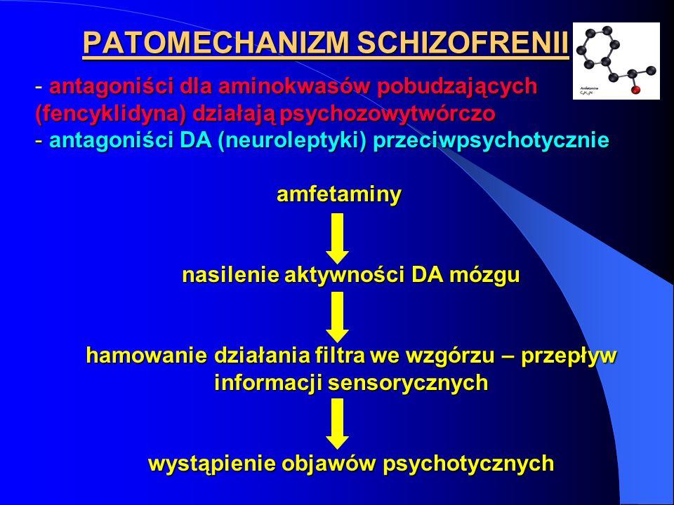 PATOMECHANIZM SCHIZOFRENII antagoniści dla aminokwasów pobudzających (fencyklidyna) działają psychozowytwórczo - antagoniści dla aminokwasów pobudzają