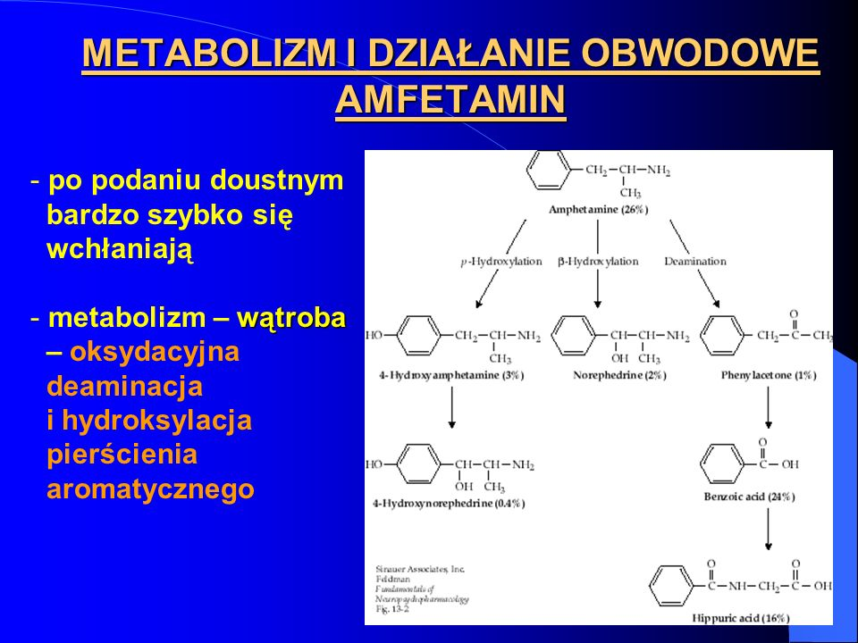 METABOLIZM I DZIAŁANIE OBWODOWE AMFETAMIN - po podaniu doustnym bardzo szybko się wchłaniają wątroba - metabolizm – wątroba – oksydacyjna deaminacja i
