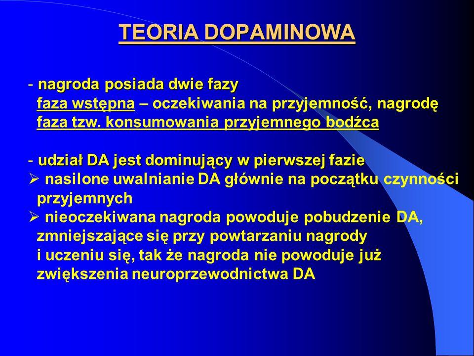TEORIA DOPAMINOWA nagroda posiada dwie fazy - nagroda posiada dwie fazy faza wstępna – oczekiwania na przyjemność, nagrodę faza tzw.
