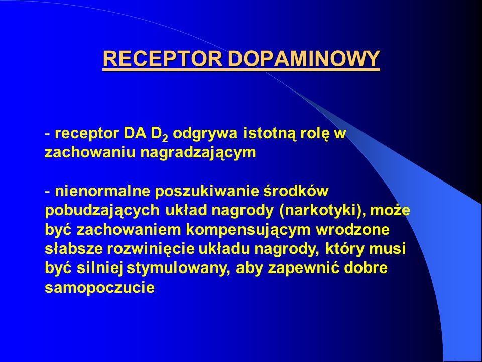 RECEPTOR DOPAMINOWY - receptor DA D 2 odgrywa istotną rolę w zachowaniu nagradzającym - nienormalne poszukiwanie środków pobudzających układ nagrody (narkotyki), może być zachowaniem kompensującym wrodzone słabsze rozwinięcie układu nagrody, który musi być silniej stymulowany, aby zapewnić dobre samopoczucie