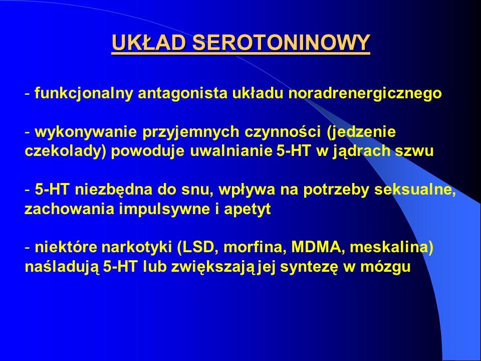 UKŁAD SEROTONINOWY - funkcjonalny antagonista układu noradrenergicznego - wykonywanie przyjemnych czynności (jedzenie czekolady) powoduje uwalnianie 5-HT w jądrach szwu - 5-HT niezbędna do snu, wpływa na potrzeby seksualne, zachowania impulsywne i apetyt - niektóre narkotyki (LSD, morfina, MDMA, meskalina) naśladują 5-HT lub zwiększają jej syntezę w mózgu
