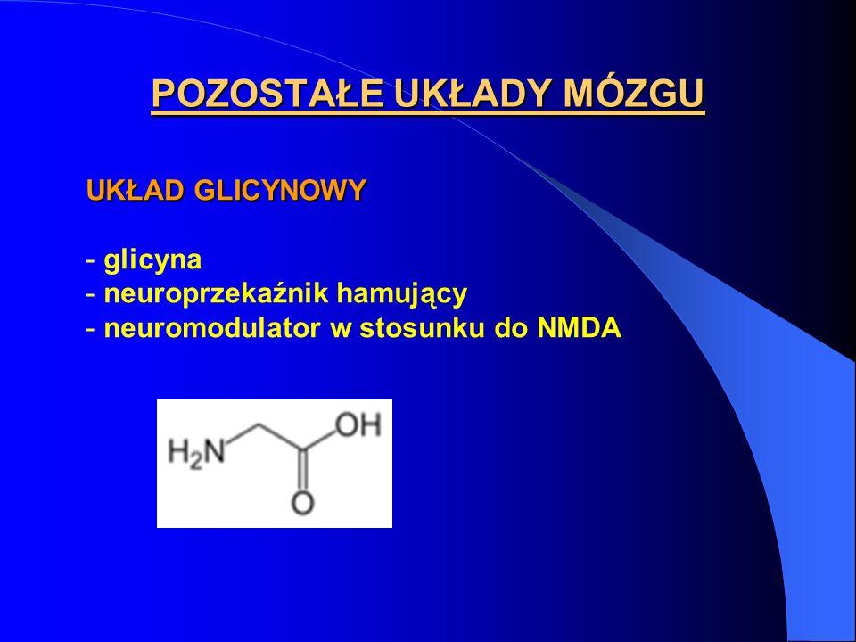 POZOSTAŁE UKŁADY MÓZGU UKŁAD GLICYNOWY - glicyna - neuroprzekaźnik hamujący - neuromodulator w stosunku do NMDA