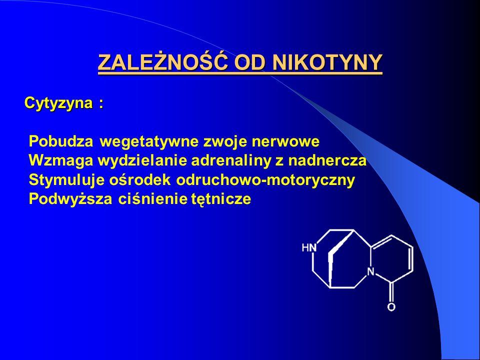 Cytyzyna : Pobudza wegetatywne zwoje nerwowe Wzmaga wydzielanie adrenaliny z nadnercza Stymuluje ośrodek odruchowo-motoryczny Podwyższa ciśnienie tętn