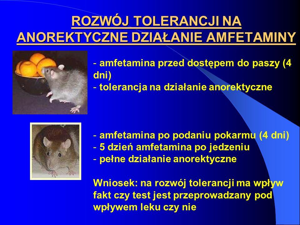ROZWÓJ TOLERANCJI NA ANOREKTYCZNE DZIAŁANIE AMFETAMINY - amfetamina przed dostępem do paszy (4 dni) - tolerancja na działanie anorektyczne - amfetamin