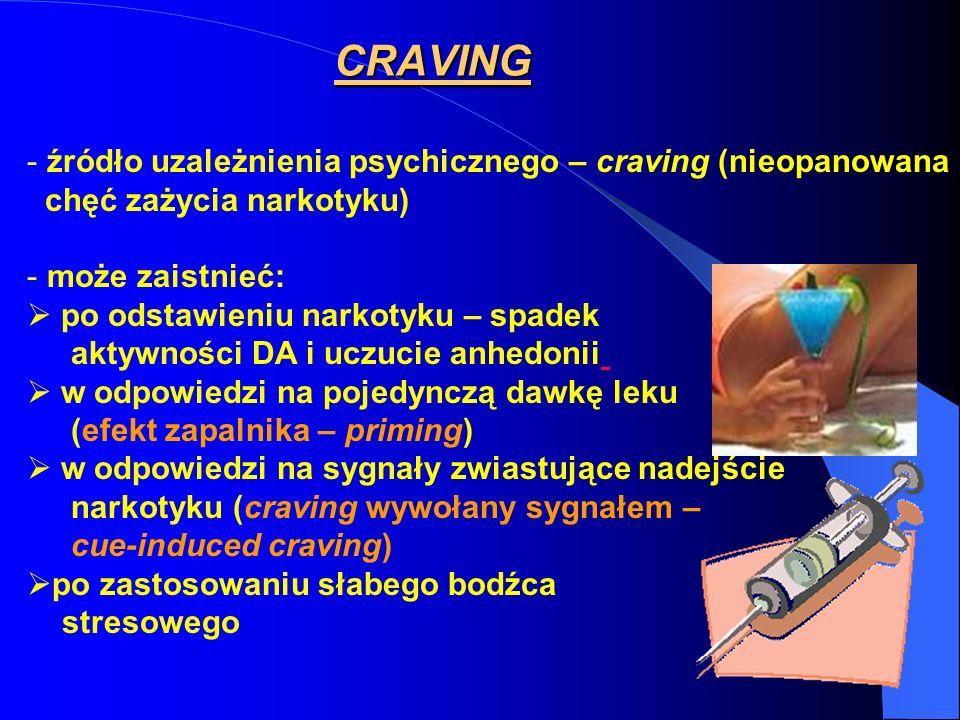 CRAVING - źródło uzależnienia psychicznego – craving (nieopanowana chęć zażycia narkotyku) - może zaistnieć: po odstawieniu narkotyku – spadek aktywno