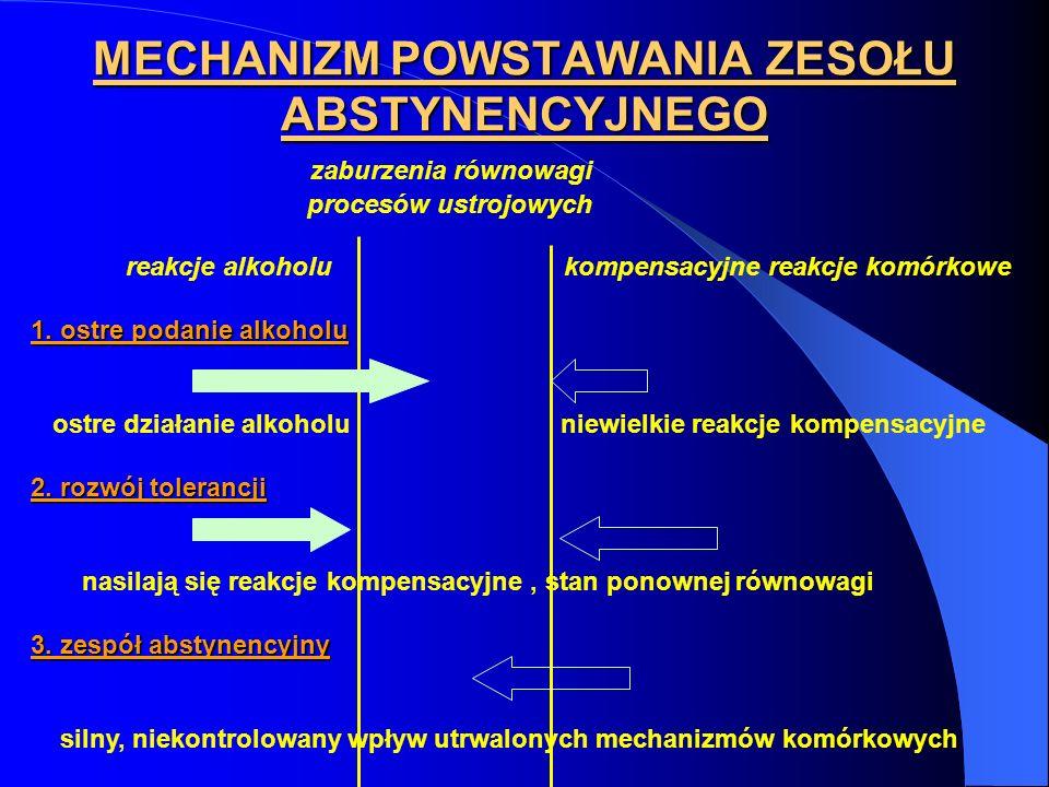 MECHANIZM POWSTAWANIA ZESOŁU ABSTYNENCYJNEGO zaburzenia równowagi procesów ustrojowych reakcje alkoholu kompensacyjne reakcje komórkowe 1. ostre podan