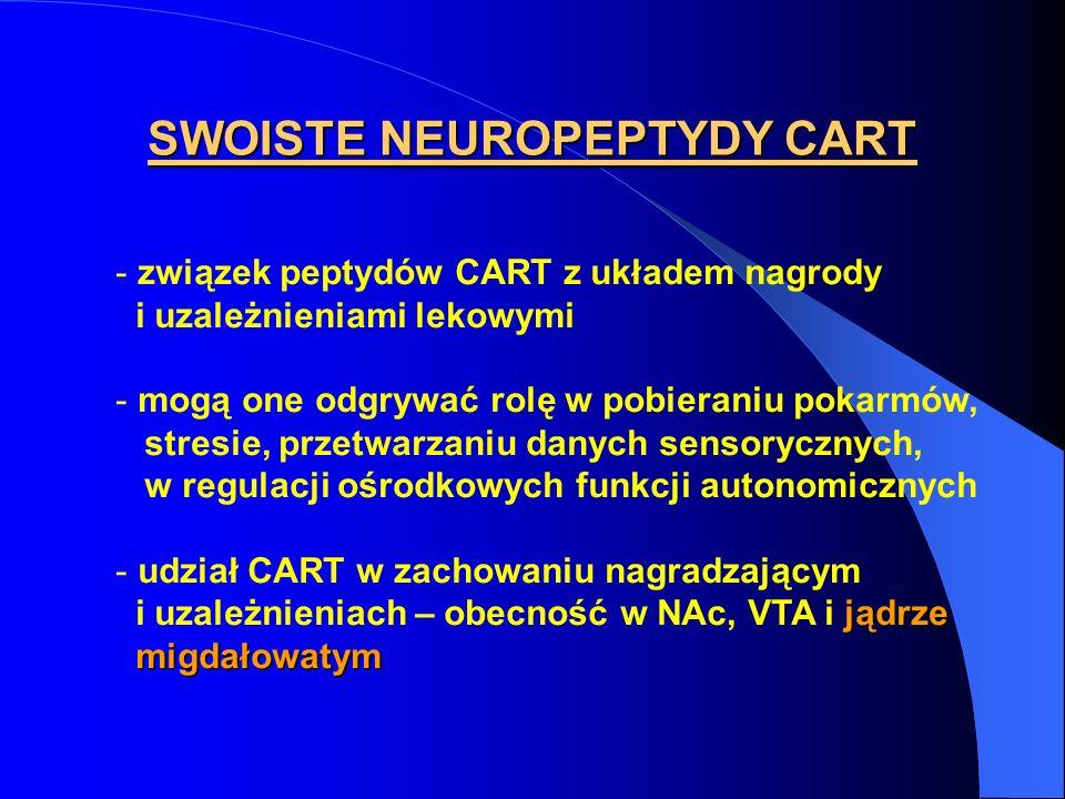 SWOISTE NEUROPEPTYDY CART - związek peptydów CART z układem nagrody i uzależnieniami lekowymi - mogą one odgrywać rolę w pobieraniu pokarmów, stresie,