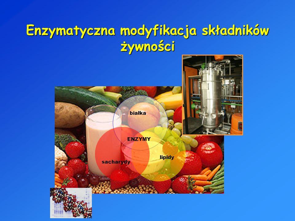 Enzymatyczna modyfikacja składników żywności sacharydy lipidy białka ENZYMY