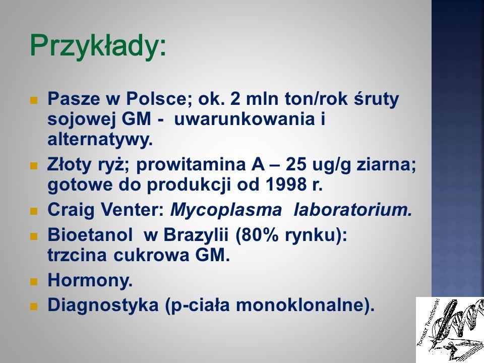 Przykłady: Pasze w Polsce; ok. 2 mln ton/rok śruty sojowej GM - uwarunkowania i alternatywy. Złoty ryż; prowitamina A – 25 ug/g ziarna; gotowe do prod